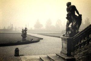 cordellina-nebbia