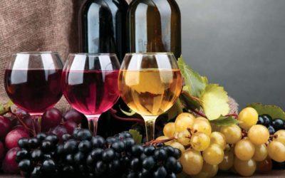 Per la vendemmia del 2019 in Veneto l'uva è sana, ma occhio al meteo