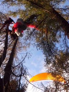 La situazione del pilota sospeso tra gli alberi, come l'hanno trovato i soccorritori.