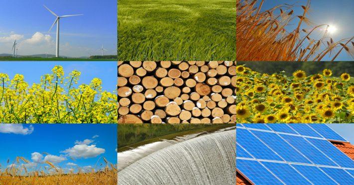 A Padova il falò delle sostenibilità: più consapevolezza  sulle energie rinnovabili