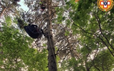 Donna appesa col parapendio sugli alberi a 20 metri dal suolo: salvata!