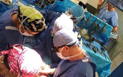 Mano tranciata riattaccata all'ospedale di Padova: ora la muove, miracolo della scienza