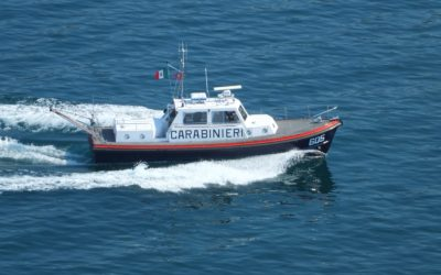 Lago di Garda, sequestrato pesce destinato ai ristoranti