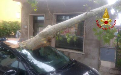 Maltempo: Chioggia e Cavarzere i comuni più colpiti