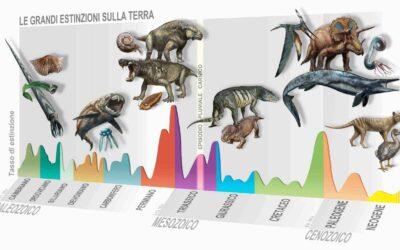 Scienza: UniPD e MUSE, individuata nuova estinzione di massa di 233 milioni di anni fa