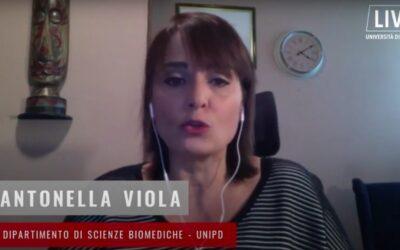 COVID 19 – Tamponi rapidi e quarantena più corta: parla l'immunologa Viola [VIDEO]