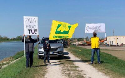 """Pic Nic contro mega impianto fotovoltaico """"mangia campi"""" a Loreo: """"Zaia batti un colpo!"""""""