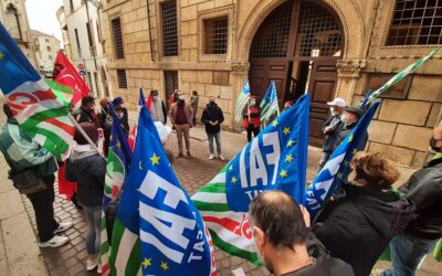 """Sospeso sciopero operai agricoli – Fai-Flai-Uila: """"Dal Ministro Patuanelli garanzie sui bonus, PAC e ammortizzatori"""