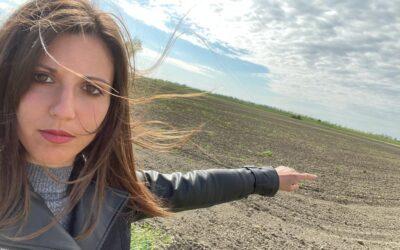 No ai pannelli solari a terra: i giovani di Coldiretti sfidano la Regione del Veneto –  Monta la protesta sul consumo di suolo