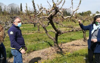 Maltempo – Moltiplicati per 4 gli eventi estremi: in Veneto gelo e bombe d'acqua in primavera